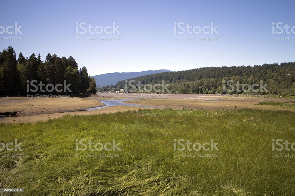 Low Tide Mudflat stock photo