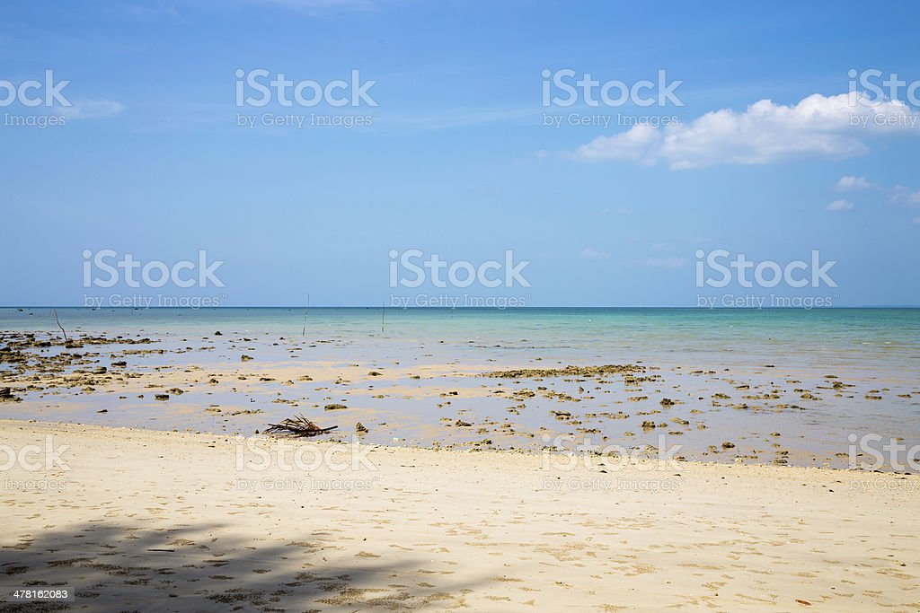 Low tide on a sandy beach with blue sky stock photo