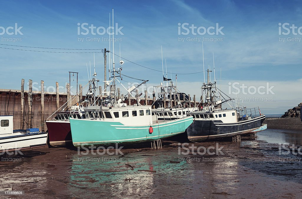 Low Tide on the Bay of Fundy royalty-free stock photo