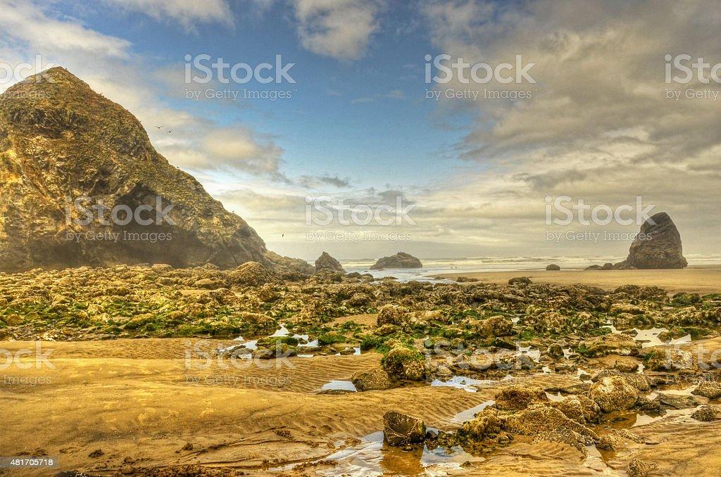 Отлив на Побережье Орегона Стоковые фото Стоковая фотография