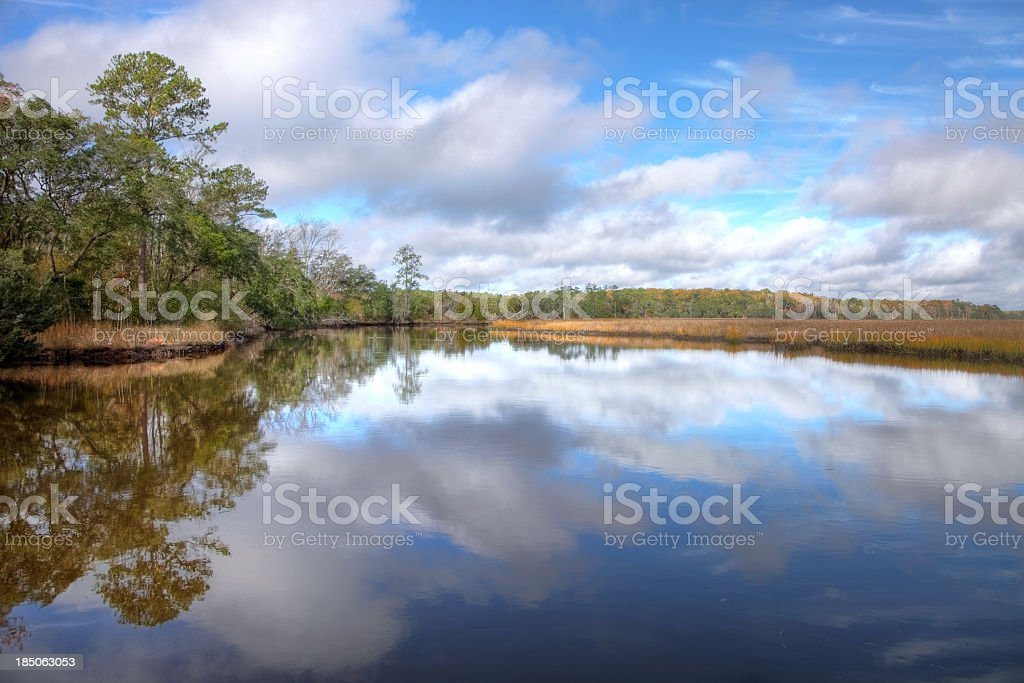 Lowcountry Reflection royalty-free stock photo