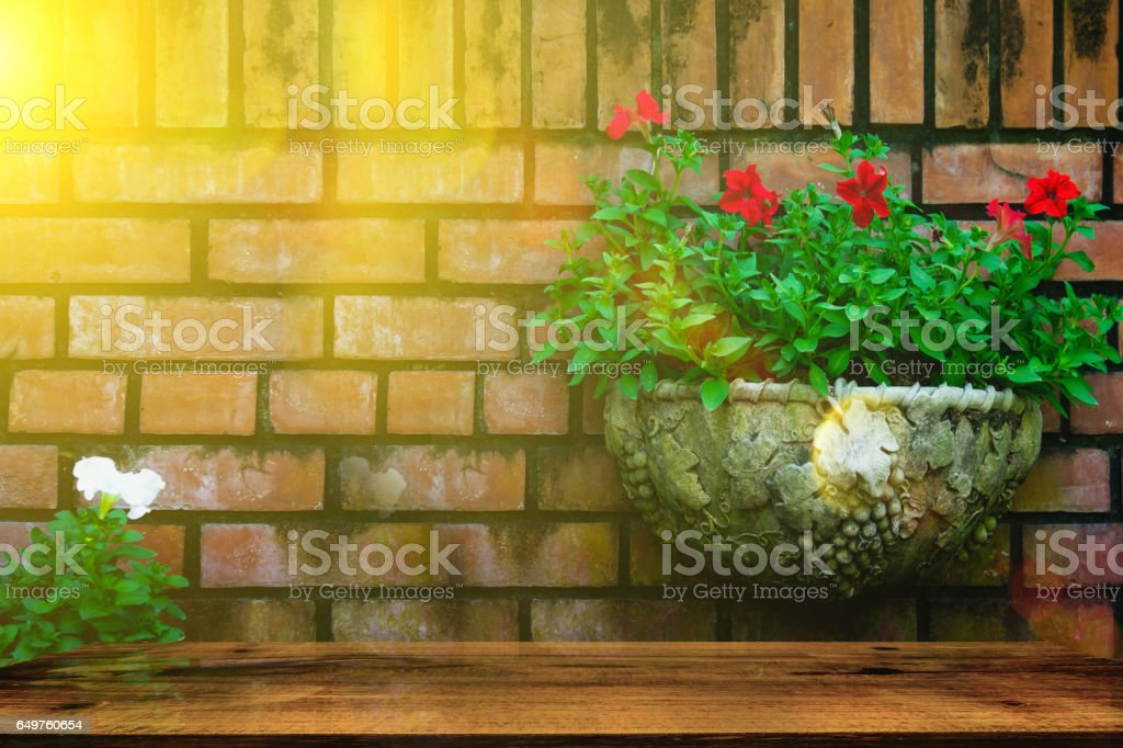 lower pot hanging in small garden. stock photo