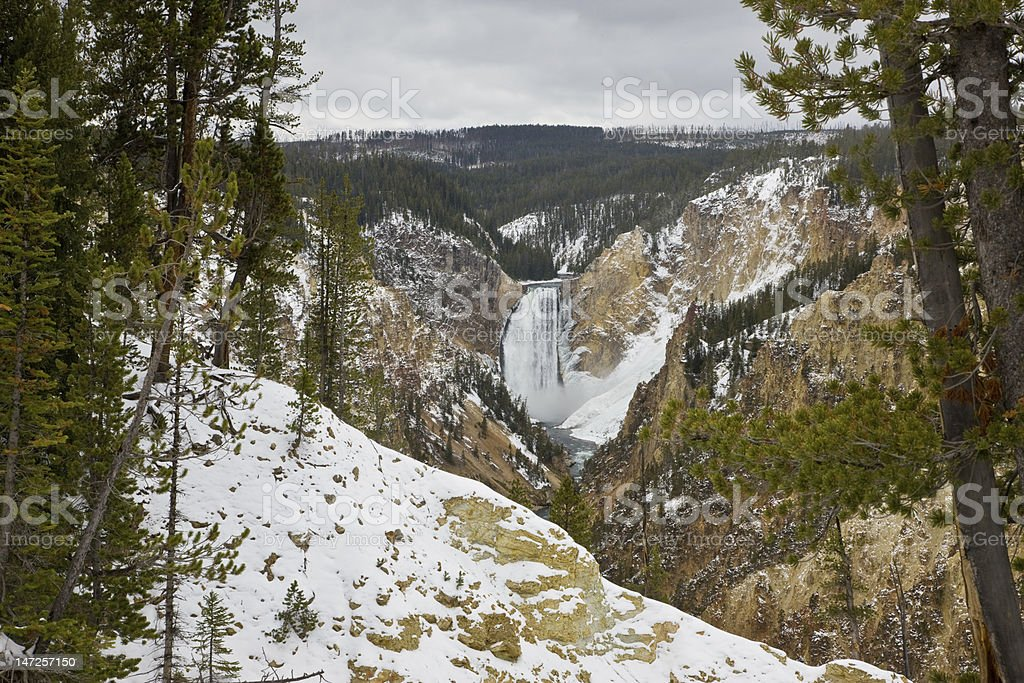 Lower Yellowstone Falls in Winter royalty-free stock photo