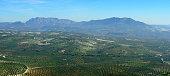 Lucena panorama