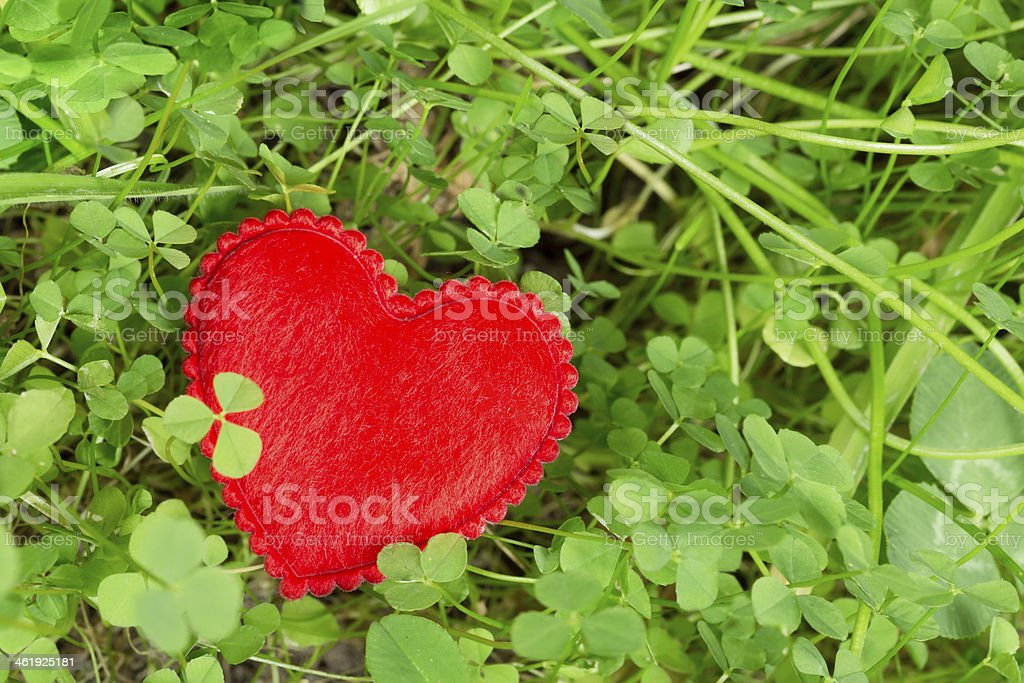 Lucky clover and a heart stock photo
