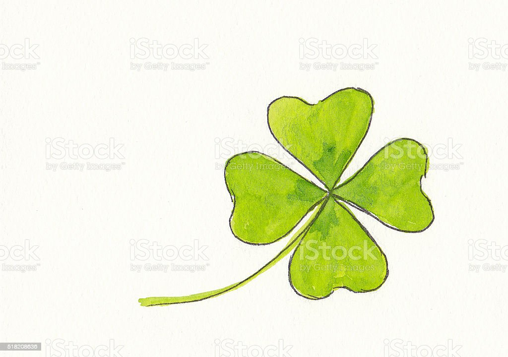 Lucky four leaved clover stock photo