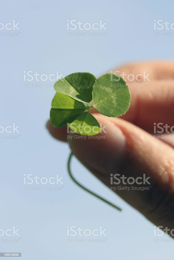 Lucky royalty-free stock photo