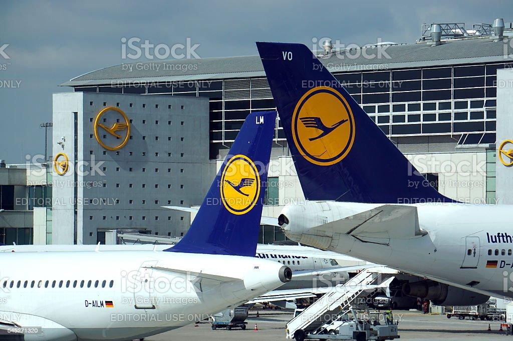 Lufthansa aircrafts at Frankfurt International airport stock photo
