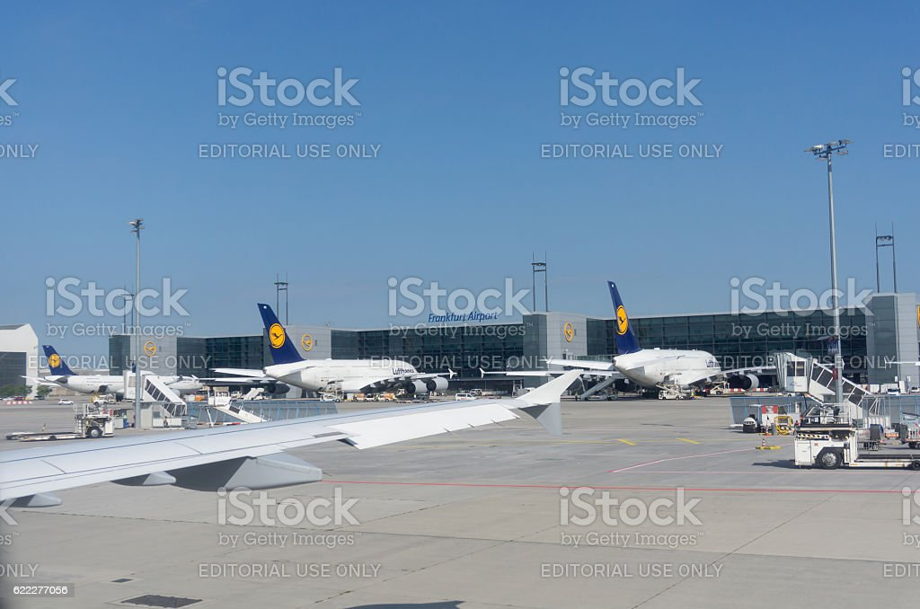 Lufthansa planes and airport equipment parked outside terminal stock photo