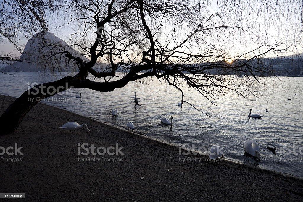 Lugano royalty-free stock photo