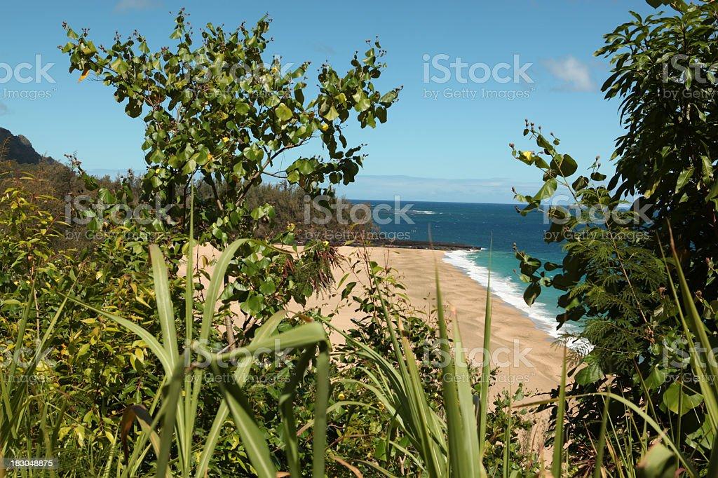 Lumahai Beach Kauai stock photo