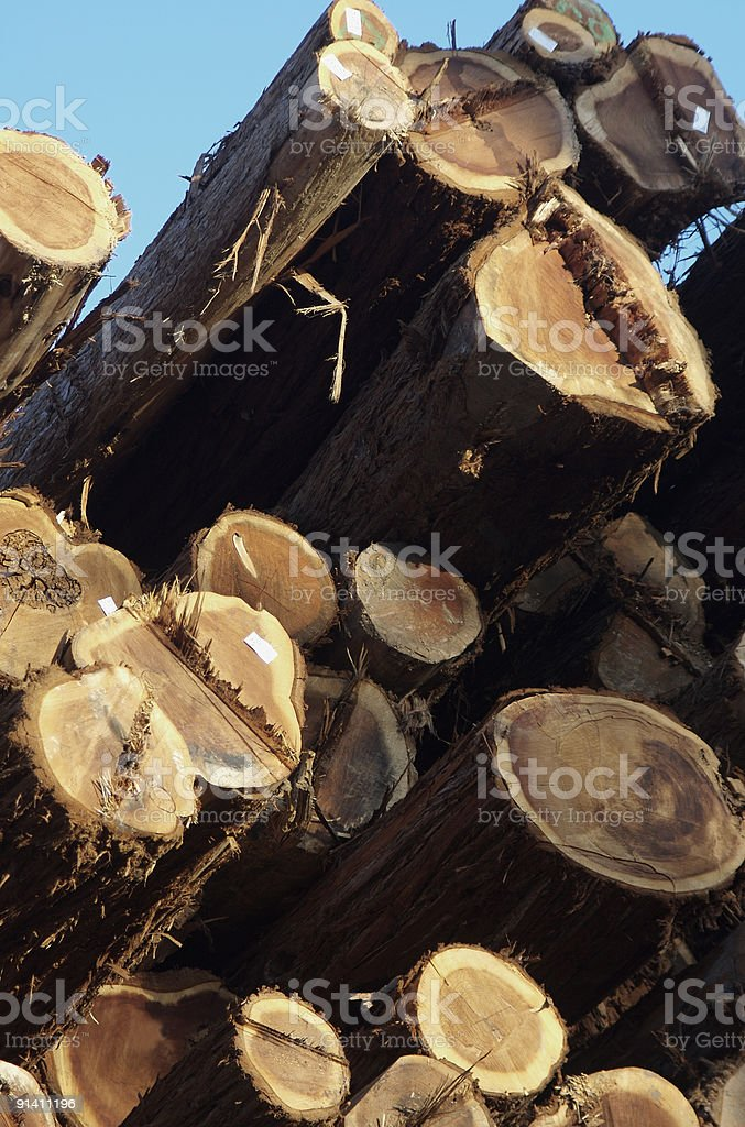 Lumber Against Blue Sky stock photo