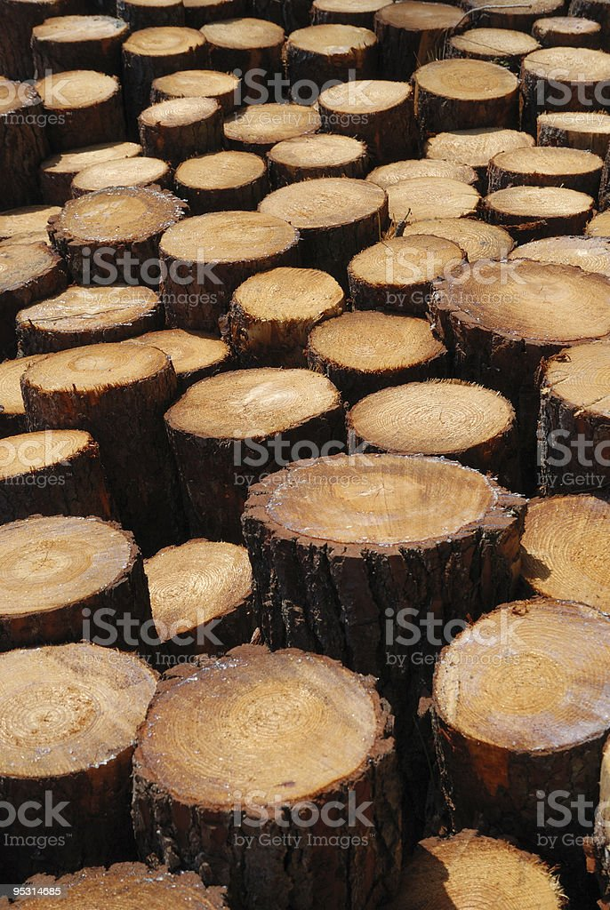 Lumber background of sawn trunks. royalty-free stock photo