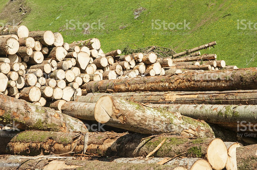 lumber industry in the european mountains royalty-free stock photo