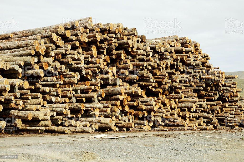 Lumber Processing 4 stock photo