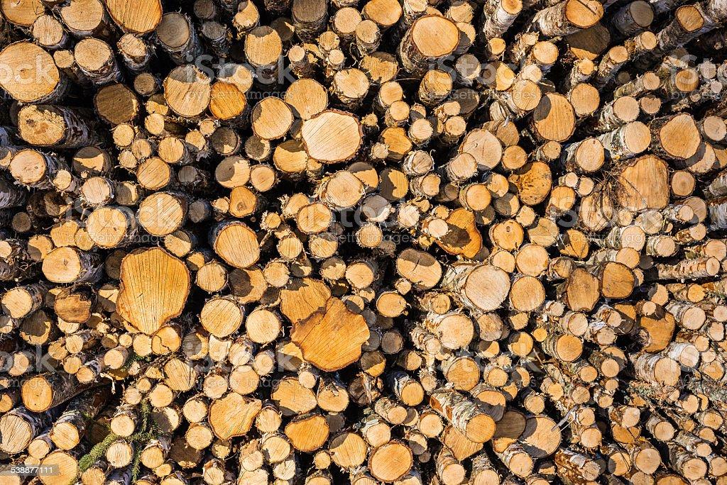 Madera/madera foto de stock libre de derechos