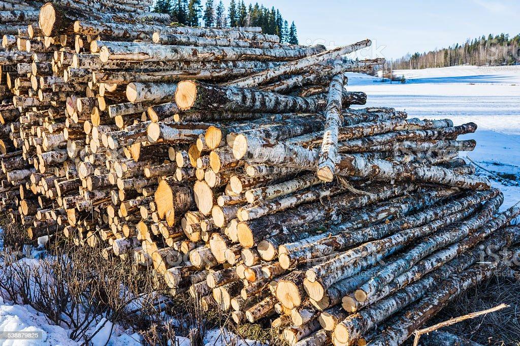 Número de madera foto de stock libre de derechos