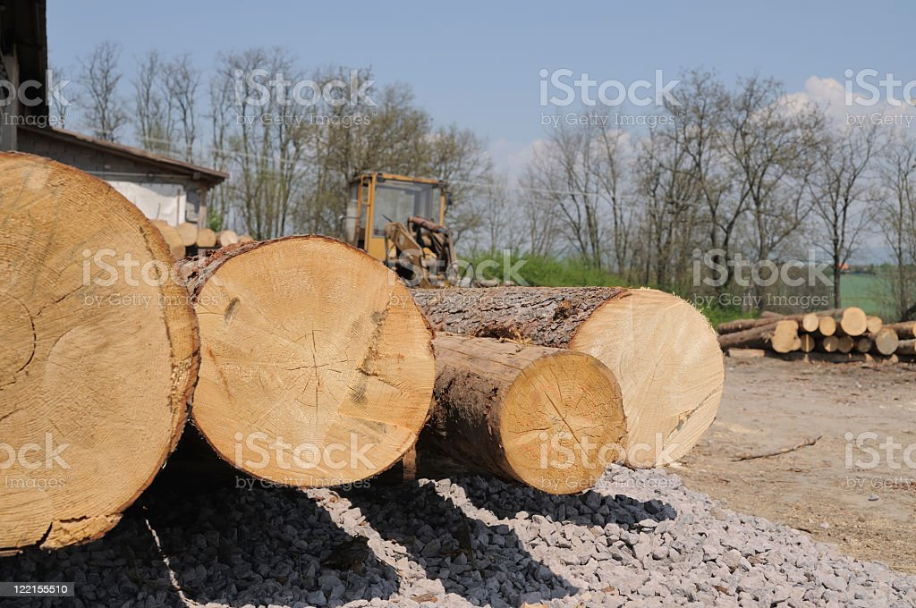 Lumber time royalty-free stock photo