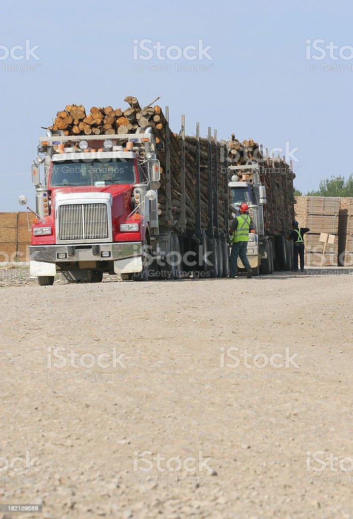 Lumber Trucks in WoodYard stock photo