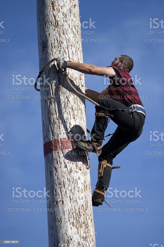 Lumberjack Climbing Pole royalty-free stock photo