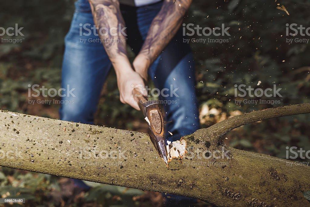 lumberjack hacking stock photo