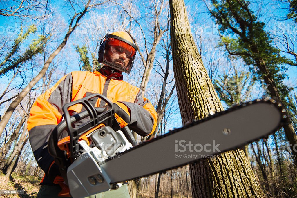 Lumberjack in protective uniform with chainsaw in forest, cutting trees stock photo
