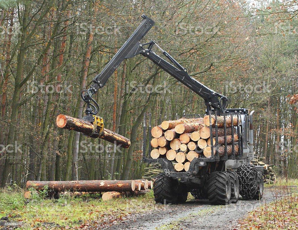 Lumberjack truck. stock photo