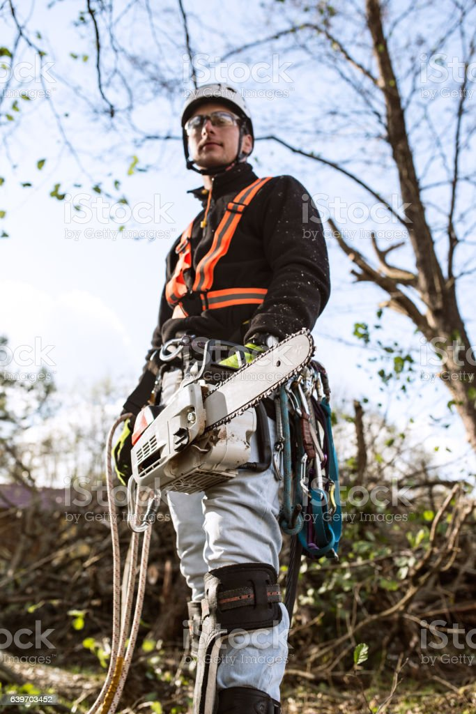 Lumberjack with chainsaw and harness going to prune a tree. stock photo