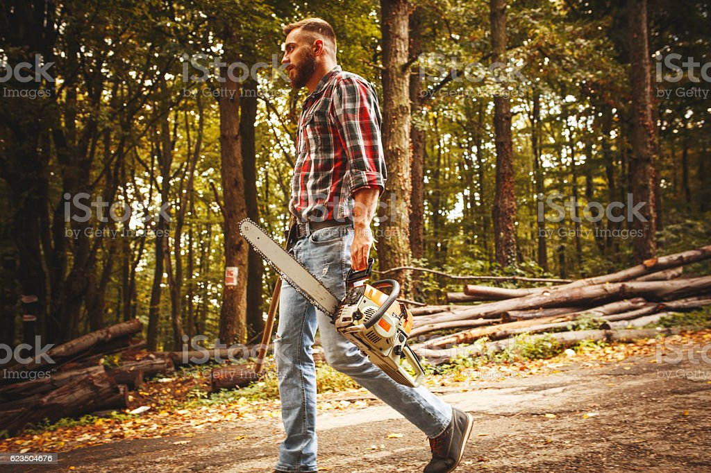 Lumberjack worker walking in the forest stock photo