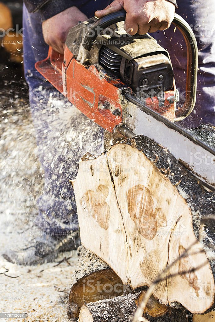 Lumberjack working with a chainsaw royalty-free stock photo