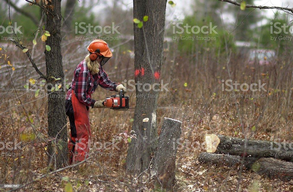 LumberJill stock photo