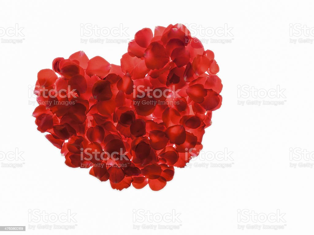 luminous heart of rose leaves, isolated on white, with copyspace stock photo