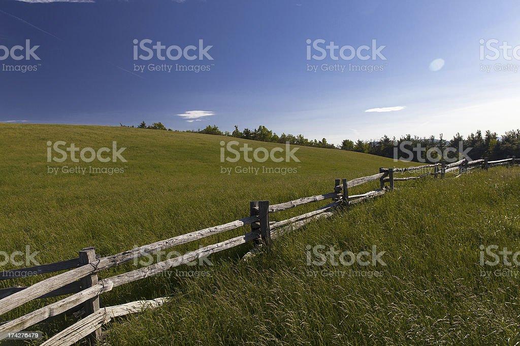 Lump Meadow royalty-free stock photo
