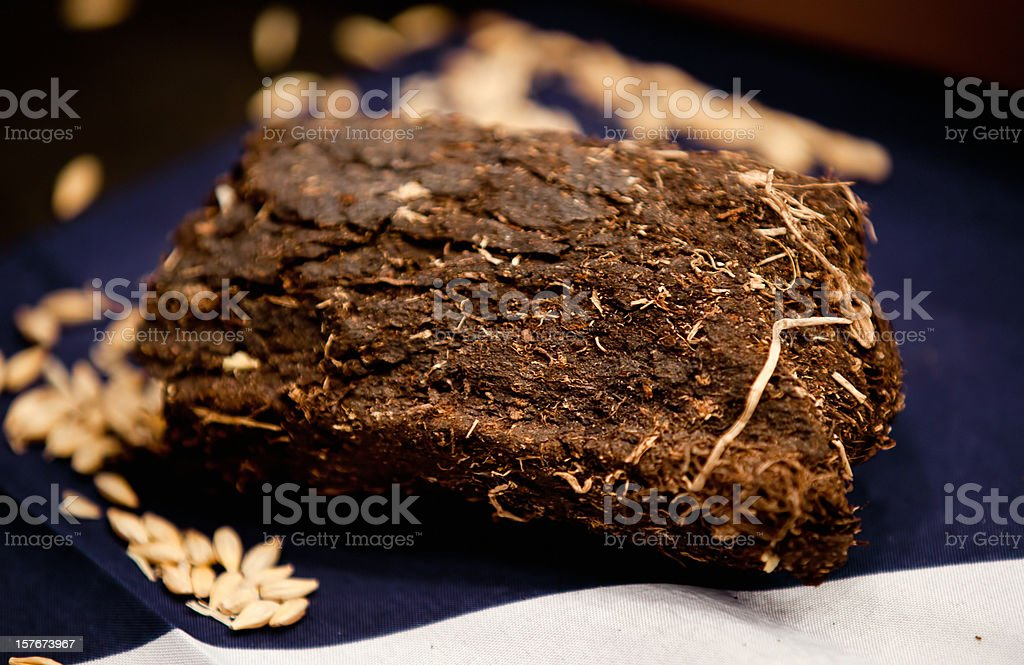 Lump of organic turf or peat used to make whiskey stock photo