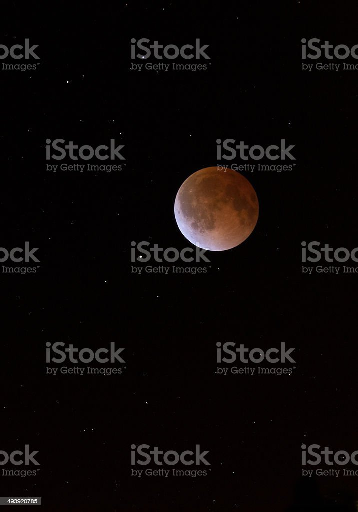 Lunar Eclipse Blood Moon Tetrad Over Midwestern Sky stock photo