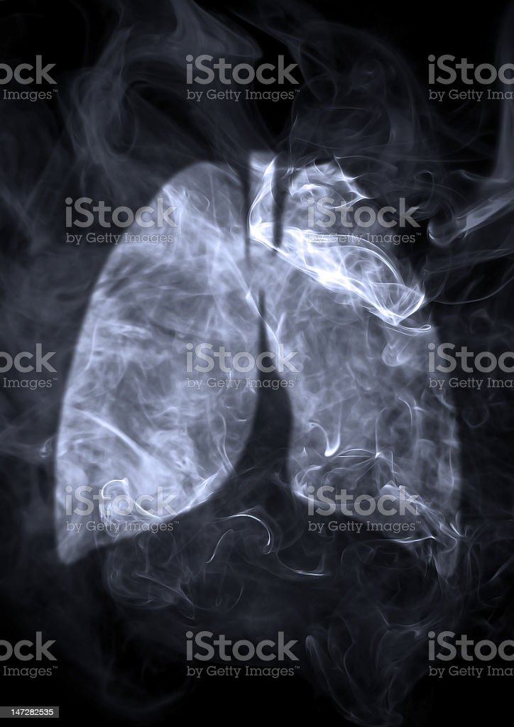 Lung stock photo