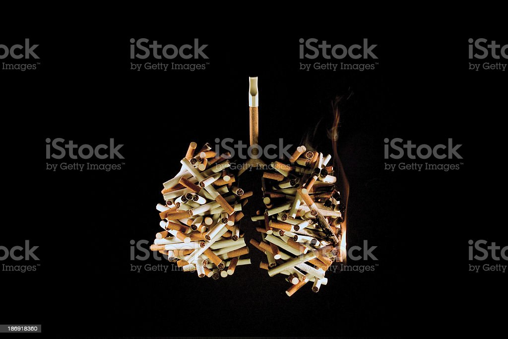 Lungs of a Smoker (Concept) stock photo