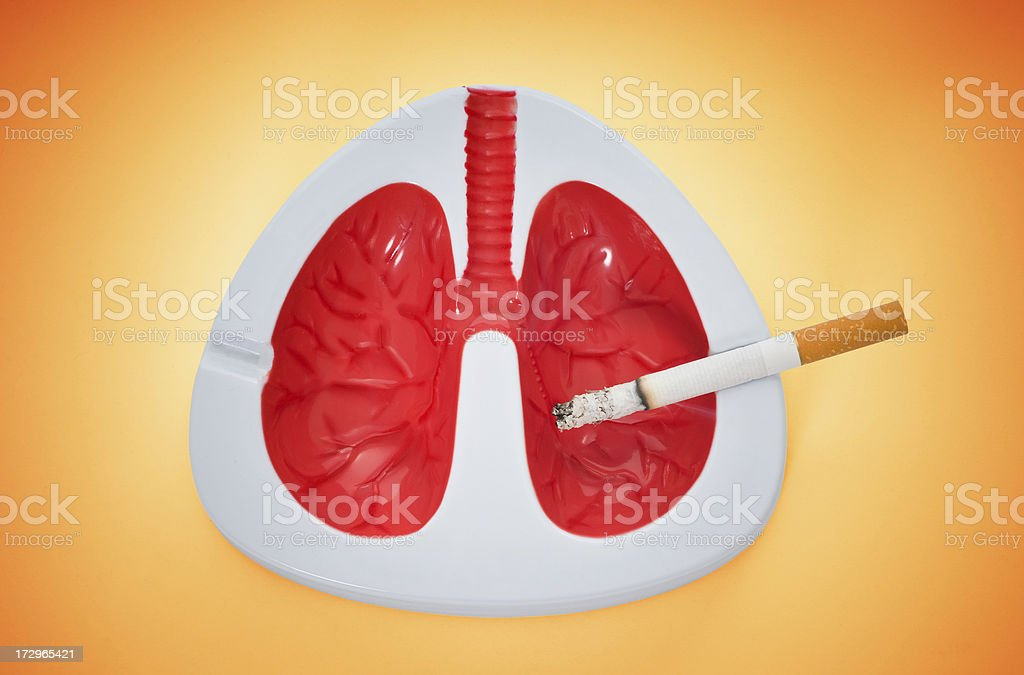 Lungs with a cigarette royalty-free stock photo