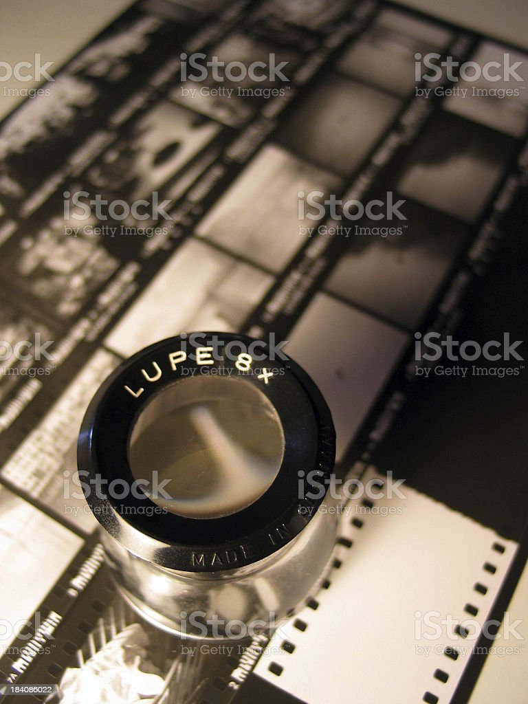 Lupe stock photo