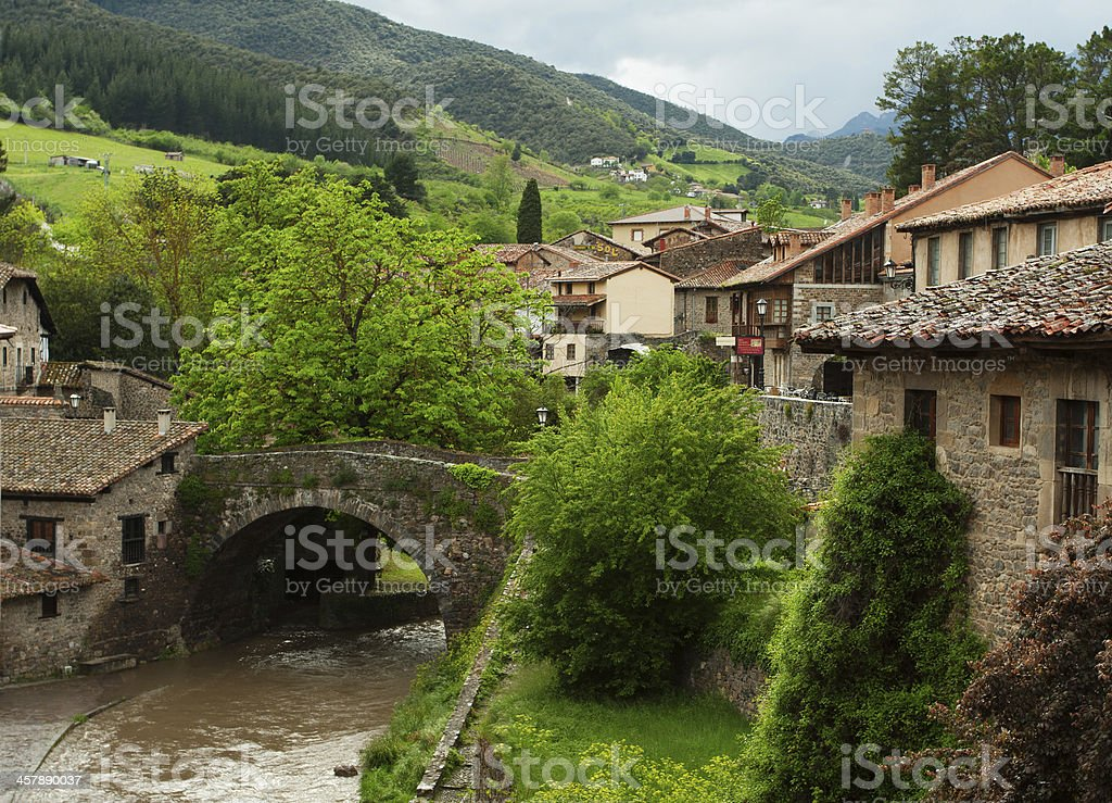 Luscious green potes and Chanals stock photo