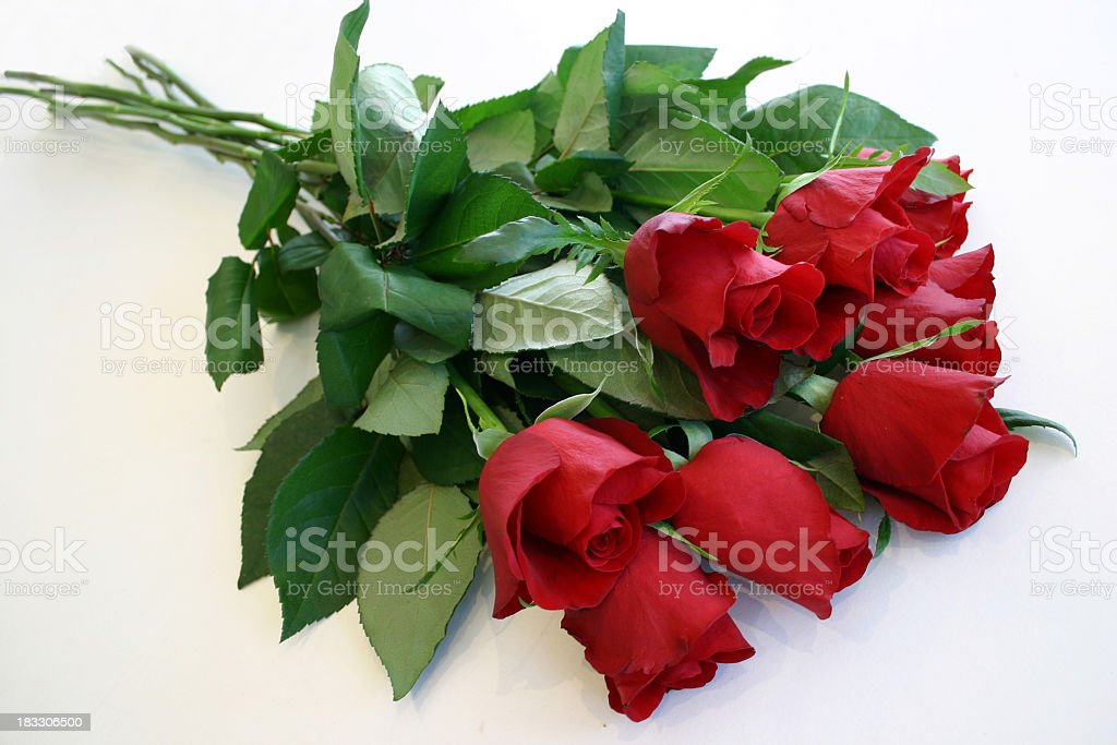 luscious leafy stems of red roses stock photo