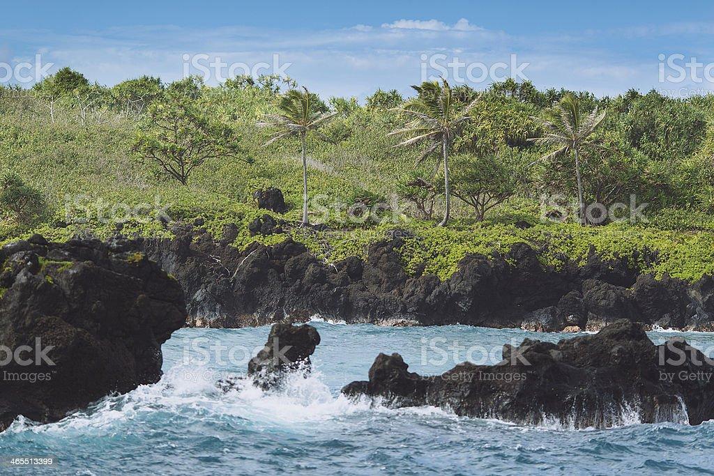 Lush Coastline - Wai'anapanapa State Park, Maui, Hawaii stock photo