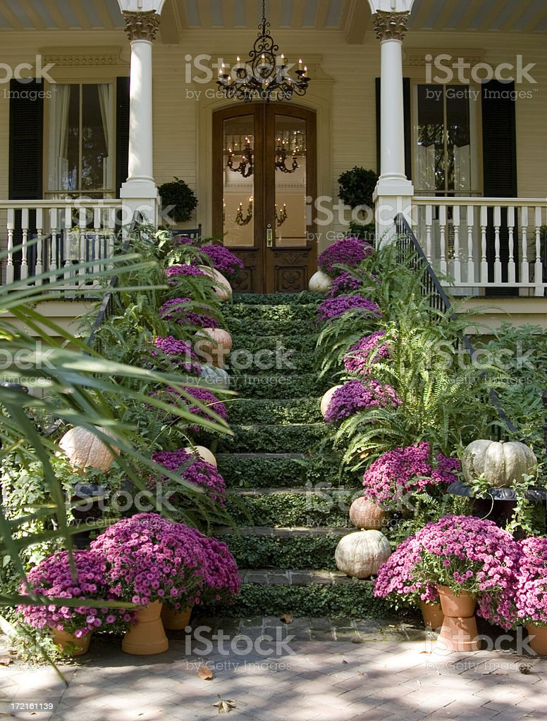 Lush Entryway - Straight On View royalty-free stock photo