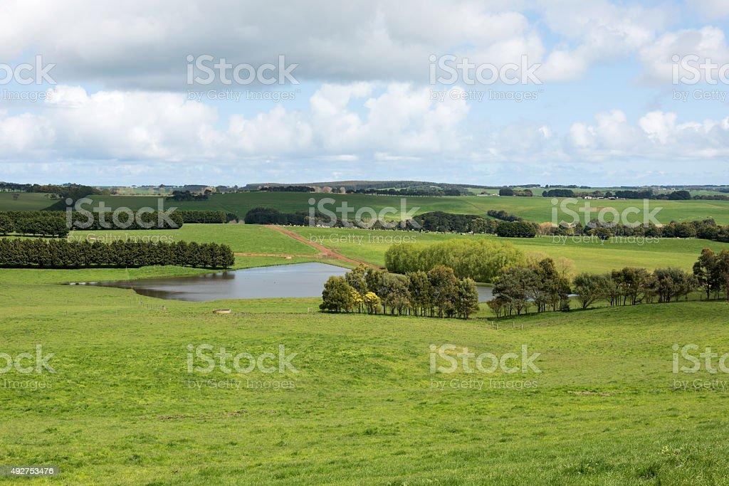 Lush Farmland, Southern Victoria, Australia stock photo