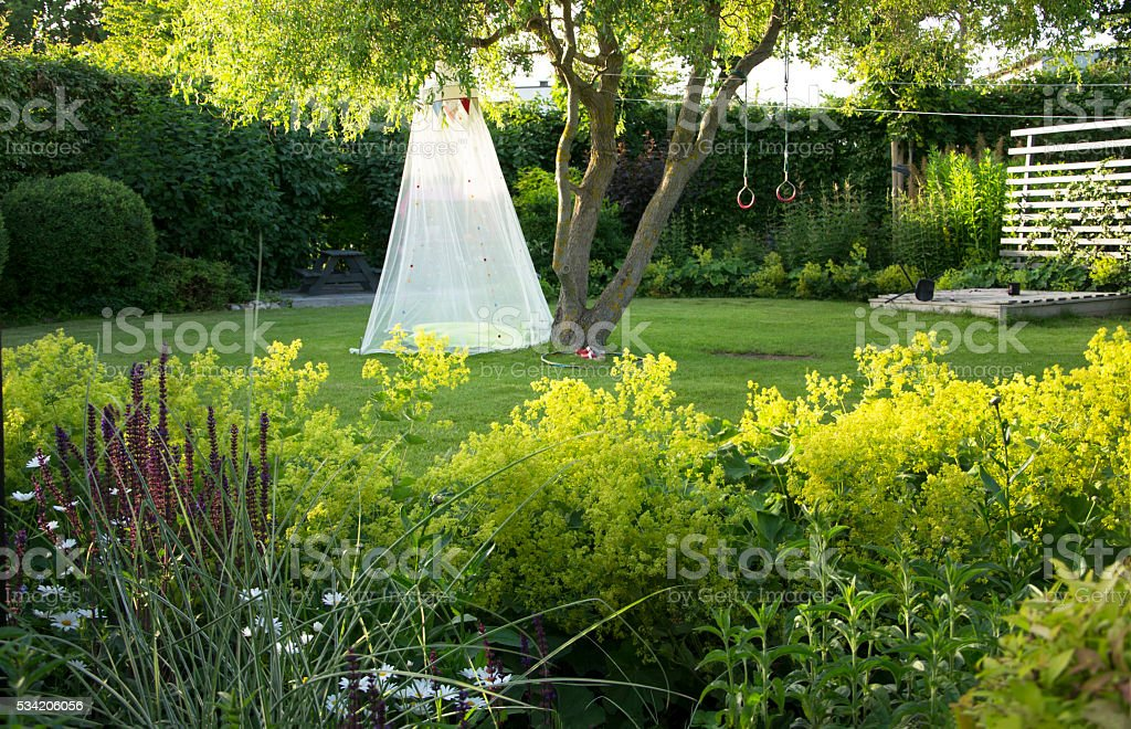 Lush Garden in the late afternoon sun stock photo