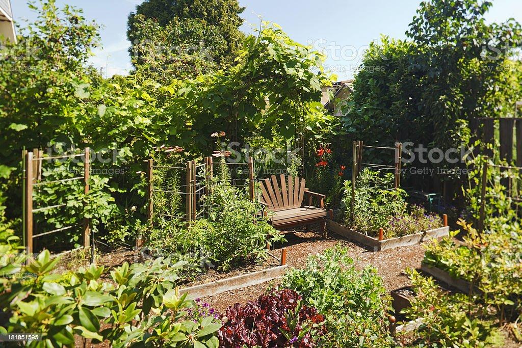 Lush Garden royalty-free stock photo