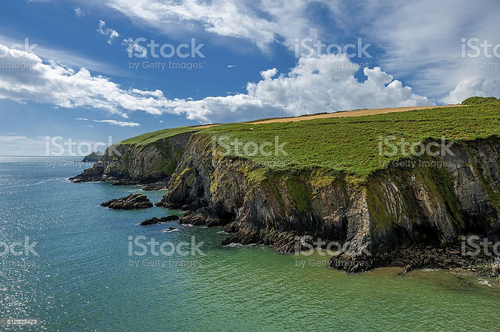 Lush Grass at Cliffs of Moher in Ireland stock photo
