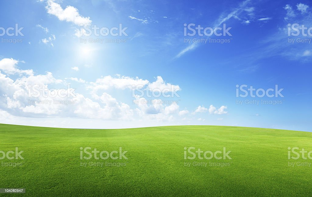Lush green field below a blue sky with sun and fluffy clouds stock photo