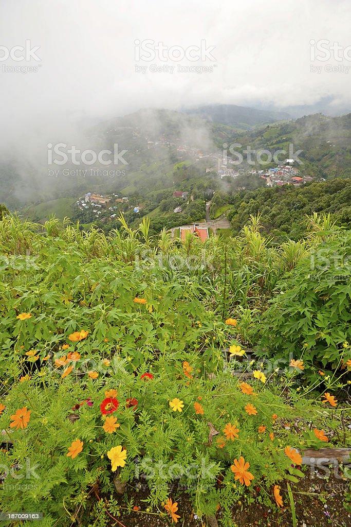Lush green hills royalty-free stock photo