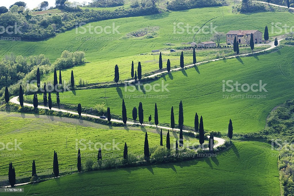 Lush green hilly landscape of Tuscany royalty-free stock photo